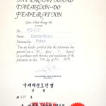certyfikat-v-dan