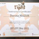 instruktor-tkd-tigers-3