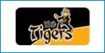 tigers_75